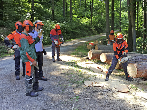 STIHL training in Waiblingen, Germany.